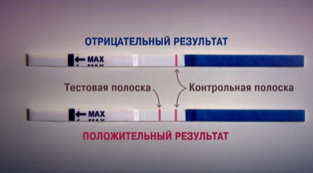 Как и когда правильно сделать тест на беременность в домашних условиях