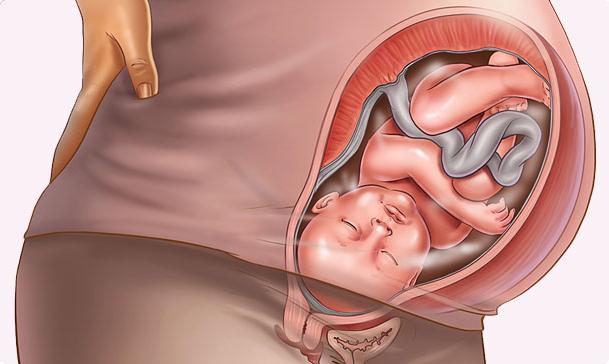 Тонус матки у беременной 97