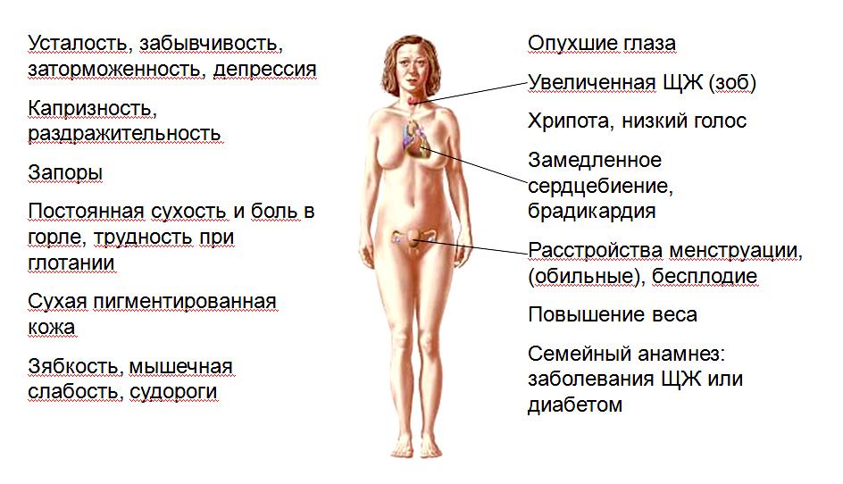 Бесплодие из за щитовидной железы лечение
